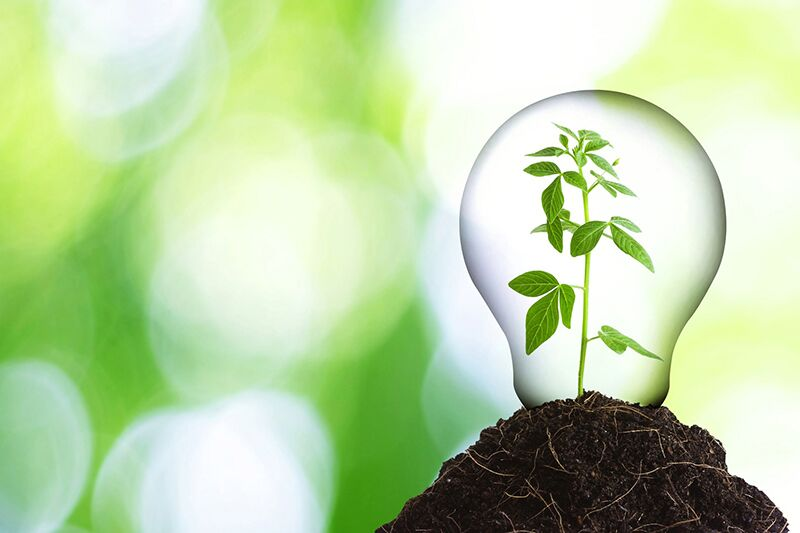Encouraging Eco-Friendly Behaviors in Your Workplace, environmentally friendly office